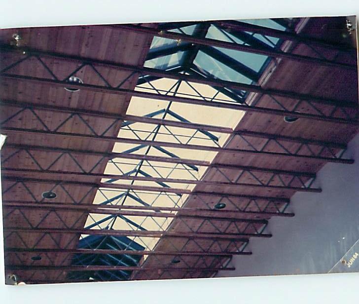 Ridge skylight